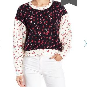 NWT Jolie Caleigh Floral Print Cropped Sweater
